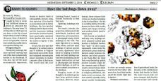 Article about native vs. invasive nonnative lady beetles