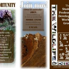 Advertising brochure redesigned for the Student Professional Development Working Group, part of The Wildlife Society